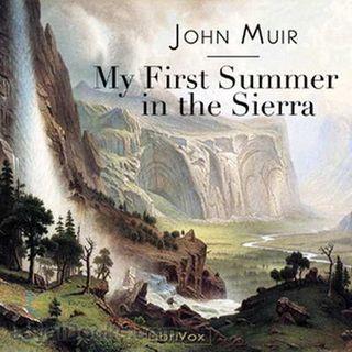First-Summer-in-the-Sierra